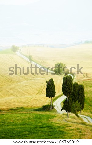 Typical landscape in Val d'Orcia ( Tuscany, Italy) at summer. Road . - stock photo