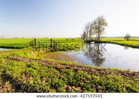 Typical polderl andscape in the Netherlands, It is a sunny day in the fall season and many brown leaves have fallen from the trees on the ground in in the water. - stock photo