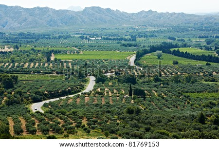 Typical Provence landscape with road, olive gardens and ridges of Alps near village of Baux, France