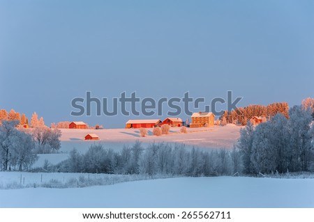 Typical red, wooden farm-houses set in the snowy countryside of northern Sweden.  - stock photo