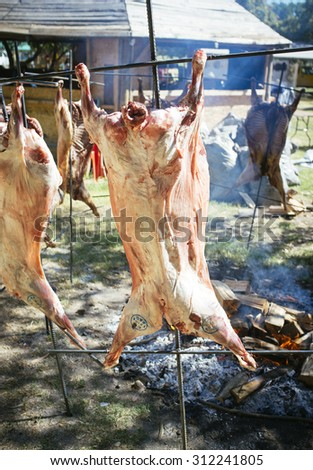 typical roast lamb standing in front of coals of charcoal - stock photo