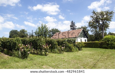 Typical rural hungarian house in the countryside next to vineyards in Latrany, close to Lake Balaton, Hungary