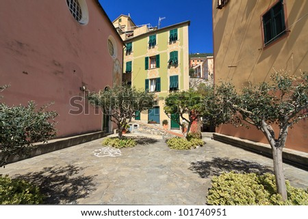 typical small square with stone paving and olive trees in Sori, Liguria, Italy - stock photo