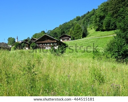Typical summer alpine landscape with chalets