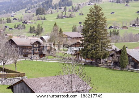Typical Swiss village on valley - Europe. - stock photo