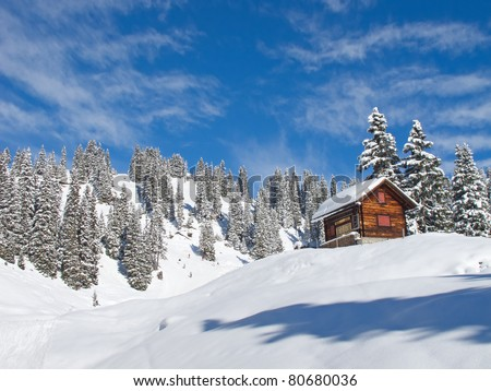 Typical swiss winter season landscape. January 2011, Switzerland. - stock photo