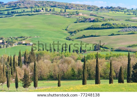 Typical Tuscan Landscape with tree lines and farmhouses, Italy - stock photo