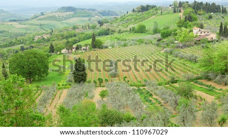 Typical Tuscan landscape with vineyards and farms