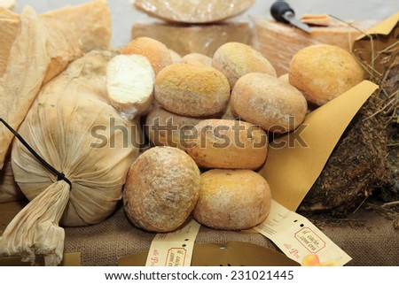 typical tuscan pecorino cheese - stock photo