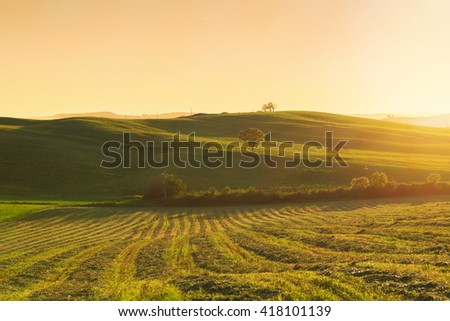Typical Tuscany landscape springtime at sunrise in Italy,Europe - stock photo