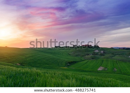 Typical Tuscany landscape springtime at sunset  in Italy,Europe