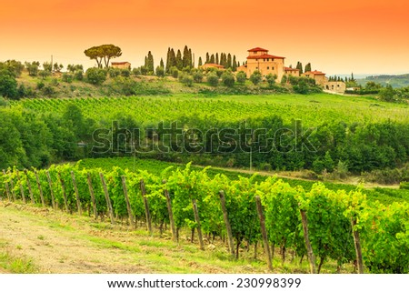 Typical Tuscany stone house with vineyard in the Chianti region and magical sunset,Tuscany,Italy,Europe - stock photo