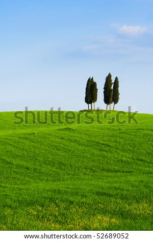 Typical Tuscany (Val d' Orcia) landscape with blue sky, rolled hills and four cypress. - stock photo