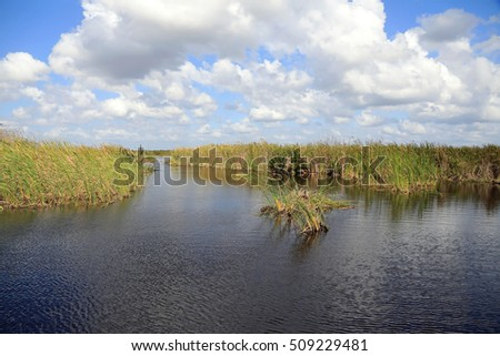 "Typical view of the Everglades, a ""River of Grass"" in Florida, a wildlife refuge and park."