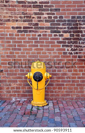 Typical yellow fire hydrant.Toronto city. - stock photo