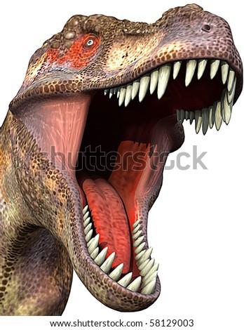 tyrannosaurus close-up 2 - stock photo