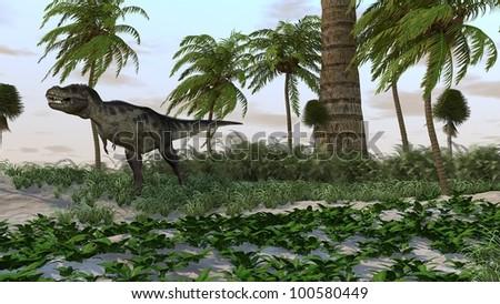 tyrannosaurus in jungle - stock photo