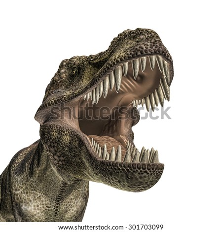 Tyrannosaurus isolated on white background - stock photo