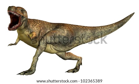 Tyrannosaurus Rex Computer generated 3D illustration