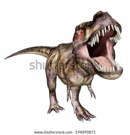 Tyrannosaurus Rex isolated on white background Computer generated 3D illustration - stock photo