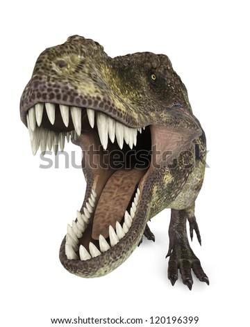 tyrannosaurus rex up view - stock photo