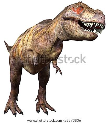 tyrannosaurus side up - stock photo
