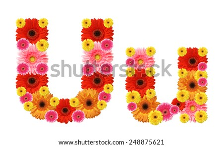 u, flower alphabet - stock photo