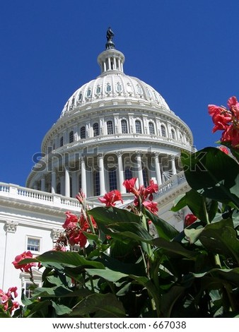 U.S. Capitol Building - stock photo