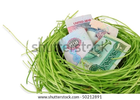 UAE currency dirhams in a nest - stock photo