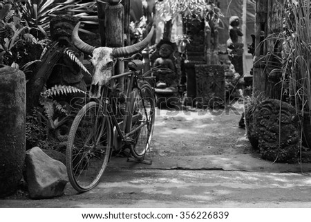UBUD, BALI - CIRCA January 2011 - A skull attached to a bicycle outside of the town of Ubud, Bali. Ubud is known for its unique Balinese art and handcrafts.