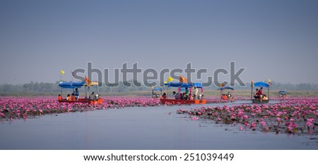 UDONTHANI, THAILAND - JANUARY 31 : Tourist boat travel for see pink lotus lake on January 31, 2015 in Nong Han, Udonthani, Thailand - stock photo