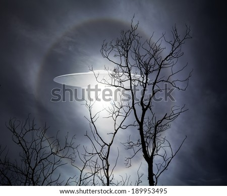 UFO alien space ship rising behind the silhouette of bare tree branches at night.