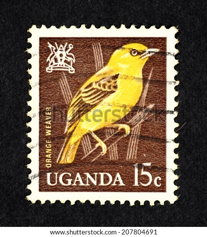 UGANDA - CIRCA 1965: Brown color postage stamp printed in Uganda with image of the Orange Weaver bird perch on a reed.