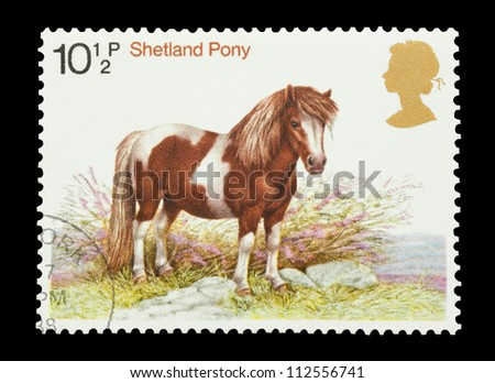 UK - CIRCA 1978: Mail stamp printed in the UK featuring a Sheltand pony standing in heather, circa 1978 - stock photo