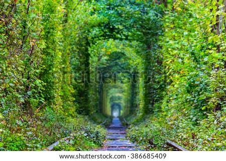 ukraine, green tunnel of lovers - stock photo