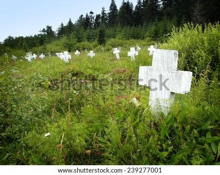 ukraine war cemetery - stock photo
