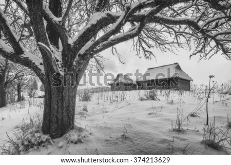 Ukrainian wooden houses on a snow-capped hill. Winter weather. Black and white conversation - stock photo