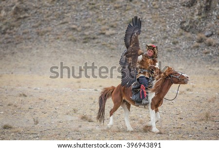 ULGII, MONGOLIA - CIRCA OCTOBER 2015: Eagle with fully open wings is landing on a hand of a traditionally dressed eagle hunter on a horse