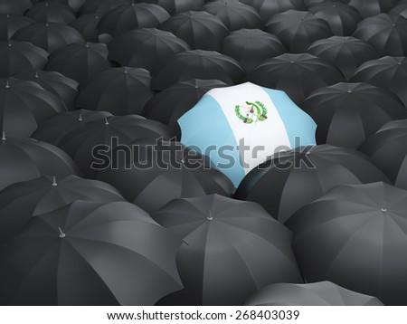 Umbrella with flag of guatemala over black umbrellas - stock photo