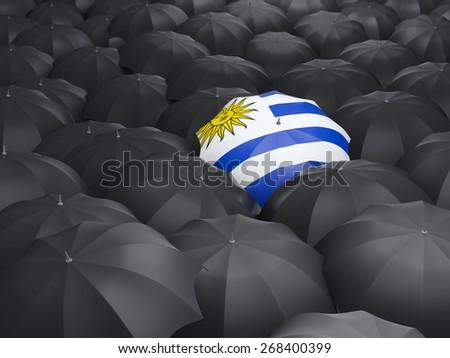 Umbrella with flag of uruguay over black umbrellas - stock photo