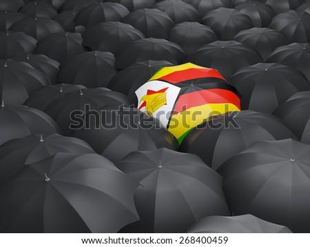 Umbrella with flag of zimbabwe over black umbrellas - stock photo