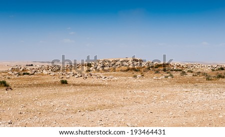 Umm ar-Rasas,an archeological site in Jordan with ruins from the Roman, Byzantine, and Muslim civilizations. UNESCO World Heritage site - stock photo