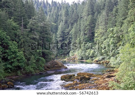 Umpqua river meanders between evergreen trees and mossy rocks in cascade mountains of Oregon - stock photo