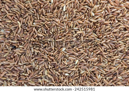 Uncooked brown rice grains white background.