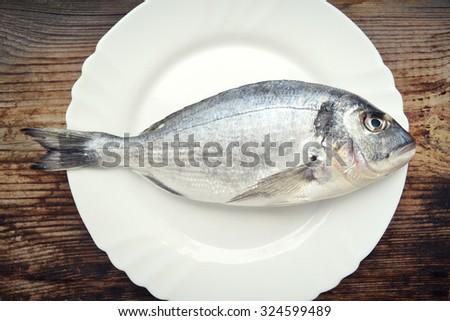 Uncooked fish dorado on a white plate - stock photo