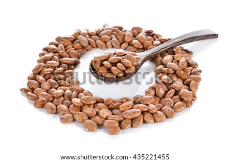 uncooked pinto beans in wooden spoon and on white background - stock photo