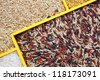 uncooked rice, uncooked raw cereals, macro closeup , rice mixture - stock photo