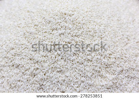Uncooked white sticky rice background - stock photo