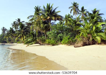 Uncrowded shore of the tropical island with white sand and coconut trees in Thailand.