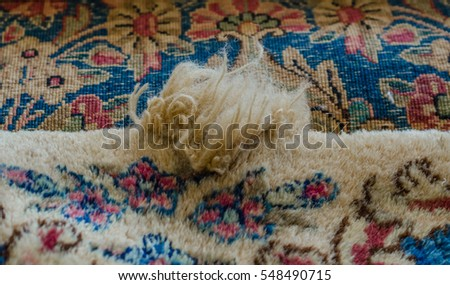 Rug Stock Images Royalty Free Images Amp Vectors Shutterstock